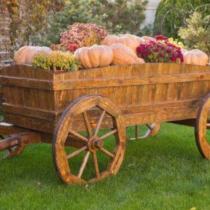 Декоративные телеги и повозки для сада